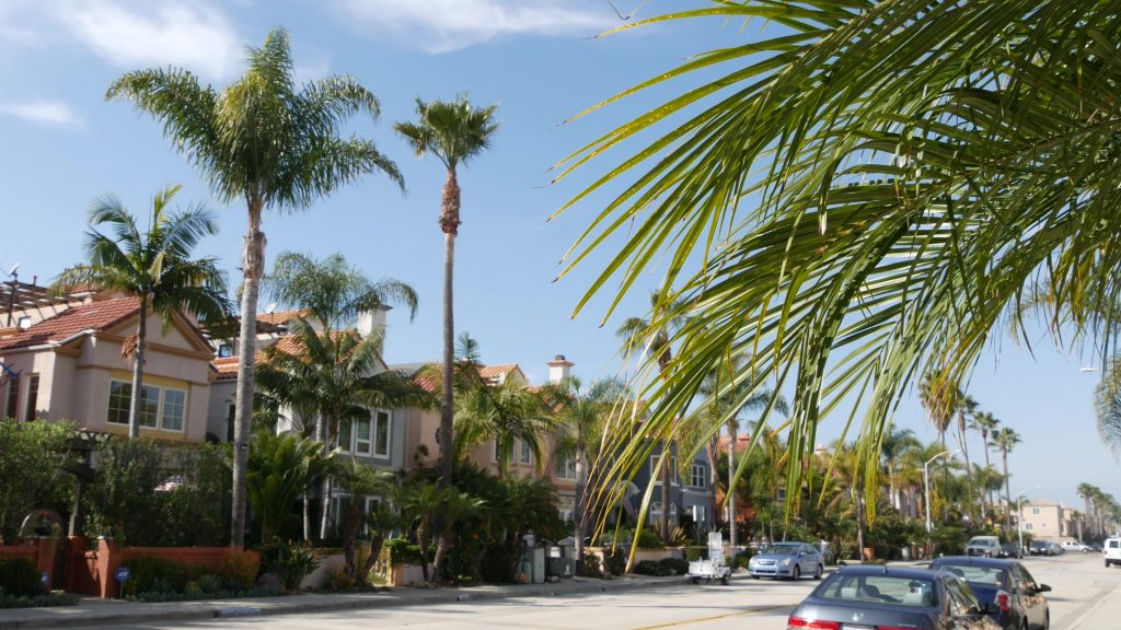 Suburban houses on street. Townhouse buildings exterior architecture. Residential real estate in USA
